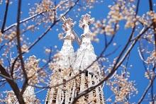 Spring-in-Barcelona